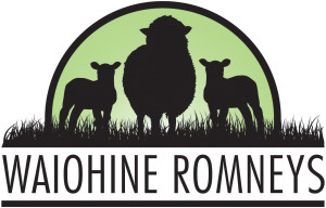 Waiohine Romneys Logo Concepts4